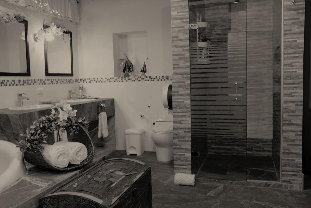 baño elegante de suit con ducha lavamanos y regadera